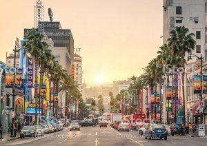 Beverly Hills Tour