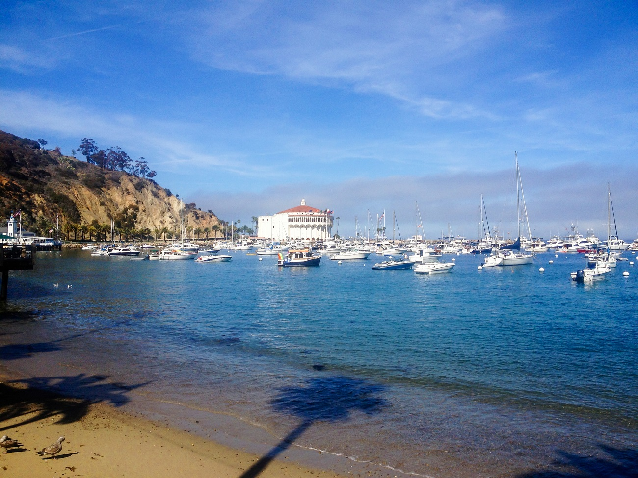 Catalina Island is one of the best swimming beaches in Southern California